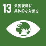 SDGs目標13アイコン