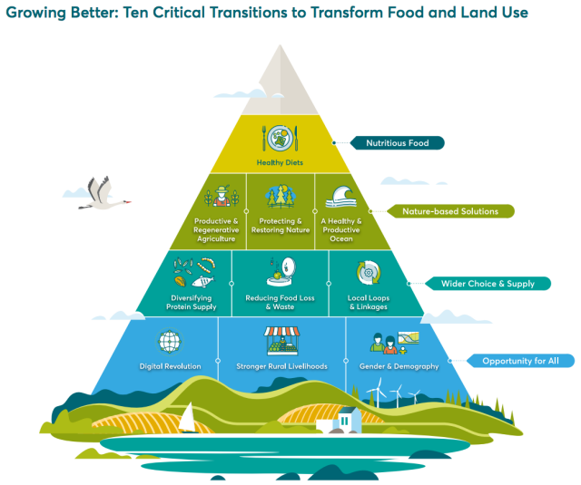 10 critical-transitions
